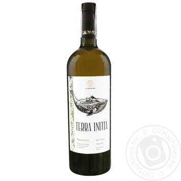 Wine Terra initia white dry 12.5% 750ml Georgia - buy, prices for MegaMarket - image 1