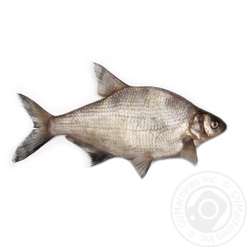Chilled Bream - buy, prices for Novus - image 1