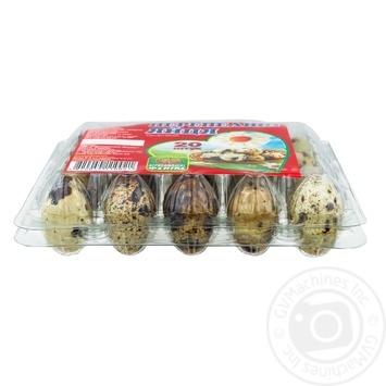 Яйцо перепелиное Агрокомплекс Феникс 20шт - купить, цены на Novus - фото 2