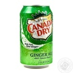 Beverage Canada dry ginger non-alcoholic 330ml can - buy, prices for MegaMarket - image 1