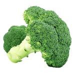 Broccoli cabbage