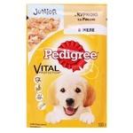 Puppies food Pedigree with chicken 100g