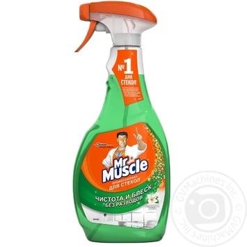 Средство Мистер Мускул для мытья стекол с нашатырным спиртом 500мл - купить, цены на МегаМаркет - фото 1