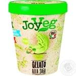 JoyVeg Ice cream soy pistachio 300g