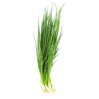 Цибуля зелена свіжа 100г - купити, ціни на Novus - фото 1