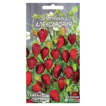 Семена Семена Украины баклажан 5г - купить, цены на Таврия В - фото 1