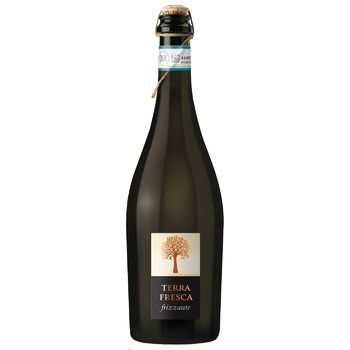 Вино игристое Terra Serena Fresca Spago Frizzante белое сухое 8,5% 0,75л
