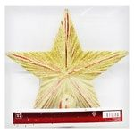 Tarrington House Christmas Decoration Tree Top Gold Star 20cm