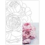 Rosa Start Still Life #29 Canvas on Cardboard with an Outline 30х40cm