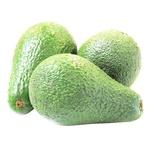 Avocado Caliber 12/14