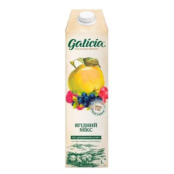 Galicia Berry Mix Homogenized Sterilized Juice 1l