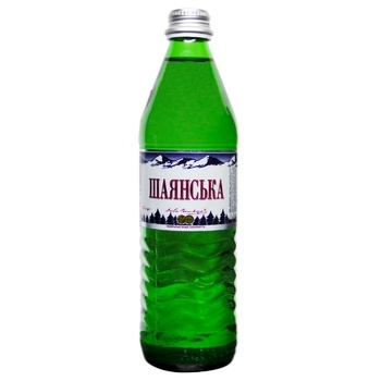 Shayanskaya Mineral Water 0,5l
