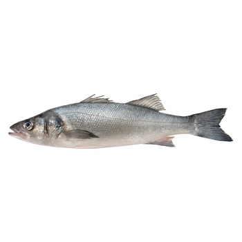 Fish Seabass Fresh ~ 200g - buy, prices for Auchan - photo 1