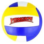 Volleyball Ball 02656