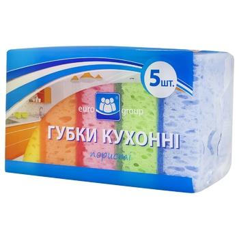 Eurogroup Kitchen Porous Sponge 5pc