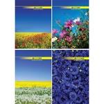 Книга обліку А4 Buromax 96арк клітинка