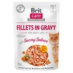 Корм Brit Fish Dreams 85 г пауч д/котів філе в соусі пікантний лосось