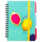 Optima Lemon Notebook B6 Plastic Cover 100 sheets