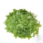 Салат фризе зеленый