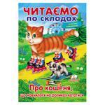 Книга Про котенка, который научился на роликах кататься