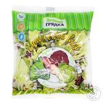 Салат Зелена грядка Испанский вкус Микс 200г