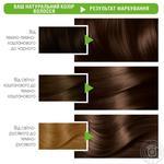 Крем-фарба для волосся Garnier Color Naturals 6.34 Карамель - купити, ціни на Ашан - фото 2