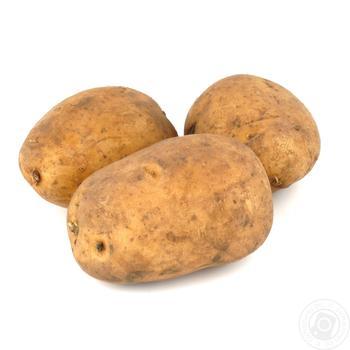 Картопля - купити, ціни на Ашан - фото 1