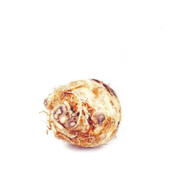 Celery Root - buy, prices for Furshet - photo 2