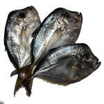 Рыба вомер слабосоленая