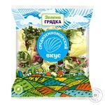 Салатный микс Зеленая Грядка Средиземноморский вкус 170г