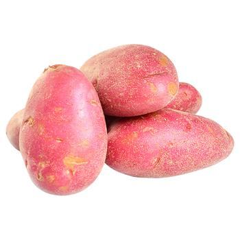 Картопля колір в асортименті - купити, ціни на Novus - фото 1
