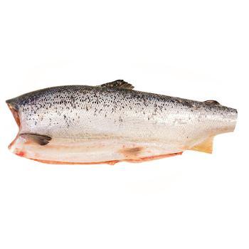 Salmon Carcass 1-2