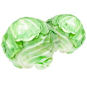 Imported Young Cabbage