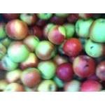 Фрукт яблука гала свіжа
