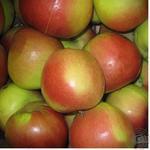 Фрукт яблука ліголь свіжа