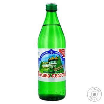 Natural mineral water Polyana Kvasova 500ml - buy, prices for Furshet - image 1