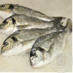 Рыба дорада свежая
