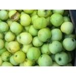 Фрукт яблоки снежный кальвин свежая