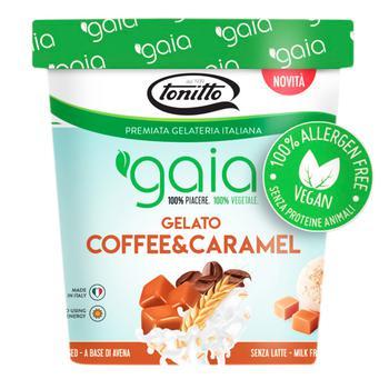 Мороженое Gaia веганское на основе овса с карамелью и кофейным вкусом 0,5л