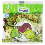 Салатный микс Зеленая Грядка Испанский вкус 200г