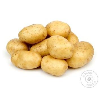 Картопля - купити, ціни на МегаМаркет - фото 1