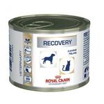 Dog/cat food Royal Canin Recovery 195g can
