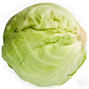 Cabbage - buy, prices for Novus - image 1