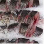 Steak silver carp fresh