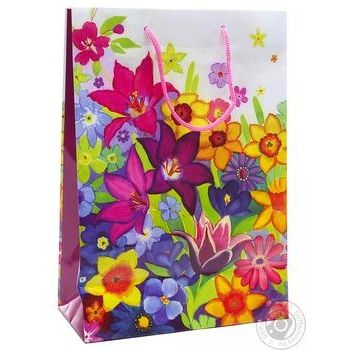 Gift Package 26х32cm in Assortment - buy, prices for Auchan - photo 6