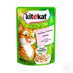 Корм для взрослых котов Kitekat с рыбой в соусе 100г