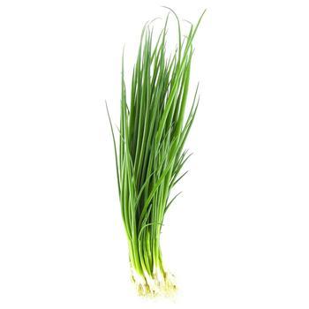Цибуля зелена 1шт - купити, ціни на Восторг - фото 1