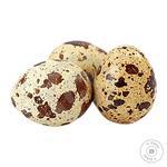 Semeyechka Quail eggs 20pcs/pack eco