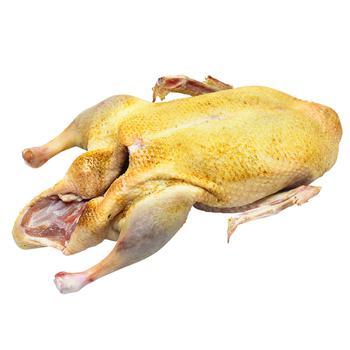 Homemade Duck