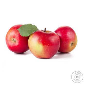 Apple Ligol - buy, prices for Novus - image 1